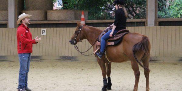 """Spiegelonline berichtet: """"Wie Schlittschuhlaufen, nur mit Pferd"""""""